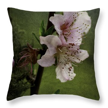 Into Spring Throw Pillow