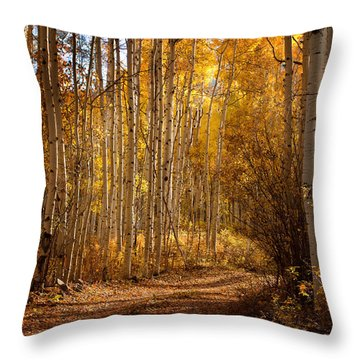 Into The Color Throw Pillow by Steven Reed