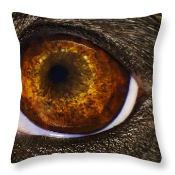 Into The Eye Of The Pit Throw Pillow