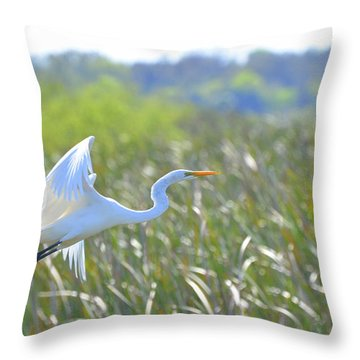 Into The Heavens II Throw Pillow by Jodi Terracina
