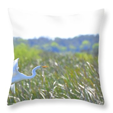 Into The Heavens Throw Pillow by Jodi Terracina