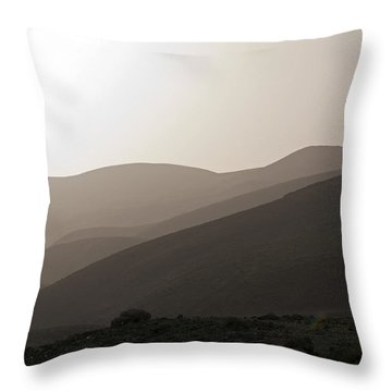 Into The Israel Desert - 1 Throw Pillow