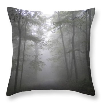 Throw Pillow featuring the photograph Into The Light by Diannah Lynch