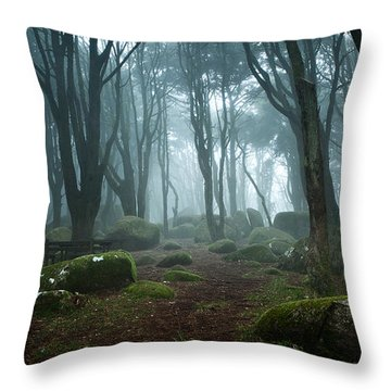 Into The Light Throw Pillow by Jorge Maia