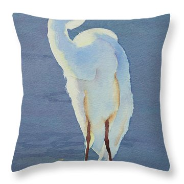 Into The Light Throw Pillow by Judy Mercer