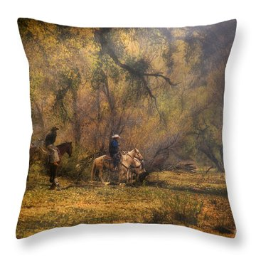 Into The Light Throw Pillow by Priscilla Burgers