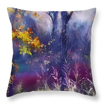 Throw Pillow featuring the photograph Into The Mist - A Dream State by Ellen Tully