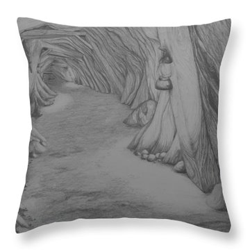 Into The Mountain Throw Pillow by Brenda Salamone