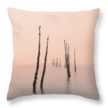 Into The Pink Sunset... Throw Pillow