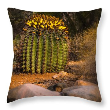 Throw Pillow featuring the photograph Into The Prickly Barrel by Mark Myhaver