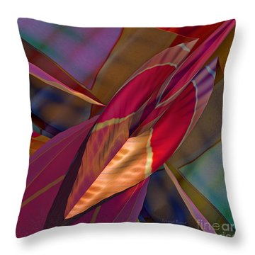 Into The Soul Throw Pillow by Deborah Benoit