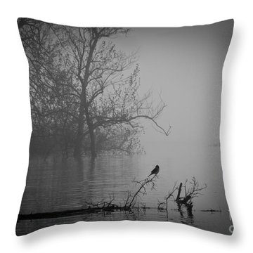 Into The Soup Throw Pillow by Douglas Stucky