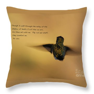 Throw Pillow featuring the photograph Into The Sunset by Debby Pueschel