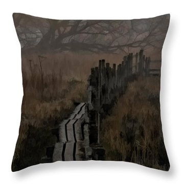 Into The Unknown  By Leif Sohlman Throw Pillow