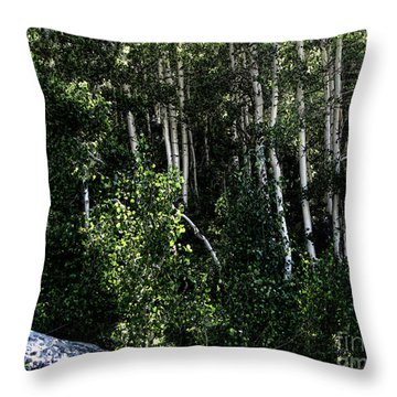 Into The Woods Throw Pillow by Bedros Awak