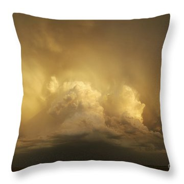 Into Zion Throw Pillow