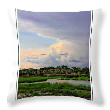 Intracoastal Colours Throw Pillow by Alice Gipson