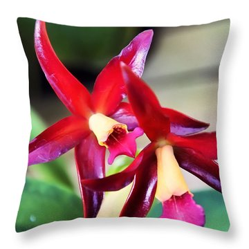 Intrageneric Brassia Hybrid Orchid Throw Pillow by Chris Flees