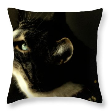 Intrigued Throw Pillow by Shari Nees