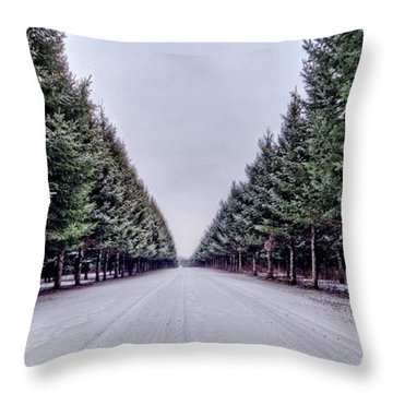Invitation From The Pines Throw Pillow by Everet Regal