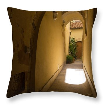 Throw Pillow featuring the photograph Invitation by Georgia Mizuleva