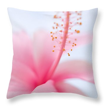 Invitation Into The Light Throw Pillow