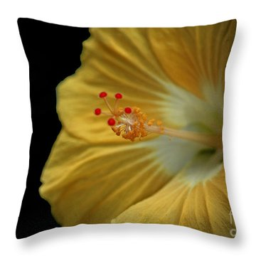 Invitation To Beauty Hibiscus Flower  Throw Pillow by Inspired Nature Photography Fine Art Photography