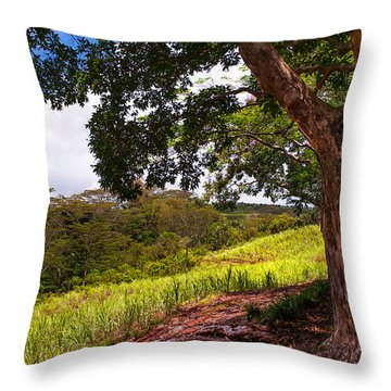Invitation To Shadow Place. Chamarel. Mauritius Throw Pillow by Jenny Rainbow