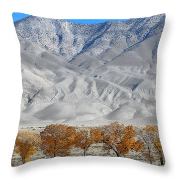 Inyo Mountains Trees And Dunes Throw Pillow