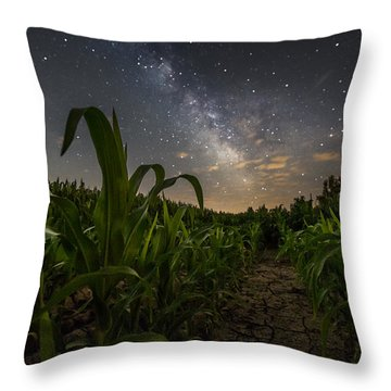 Iowa Corn Throw Pillow