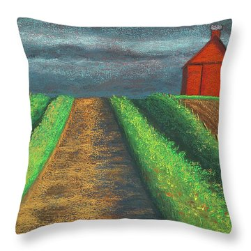 Iowa Country Road Throw Pillow by Garry McMichael