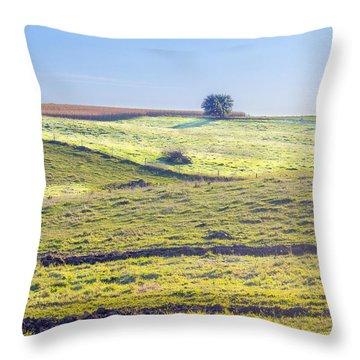 Iowa Farm Land #1 Throw Pillow