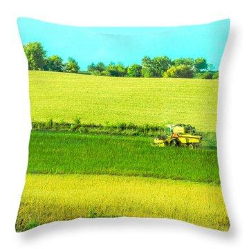 Iowa Farm Land #3 Throw Pillow