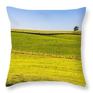 Iowa Farm Land #2 Throw Pillow