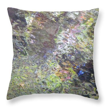 Iridescence Throw Pillow by Donna Blackhall
