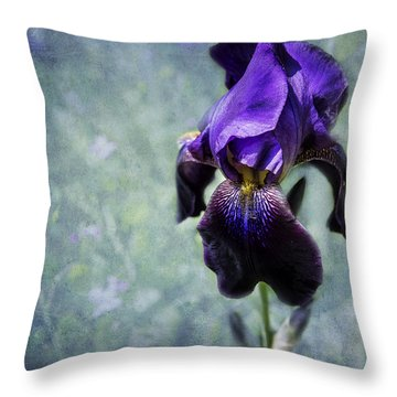 Iris - Purple And Blue - Flowers Throw Pillow