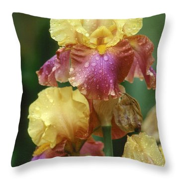 Iris 1 Throw Pillow by Andy Shomock