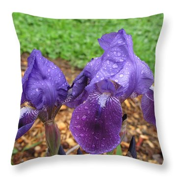 Iris After Rain Throw Pillow