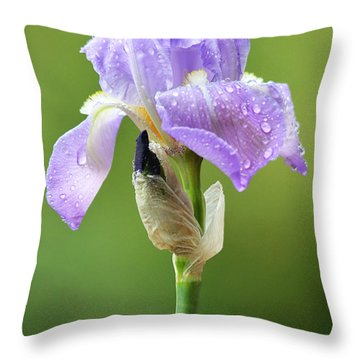 Throw Pillow featuring the photograph Iris After The Rain by Trina  Ansel