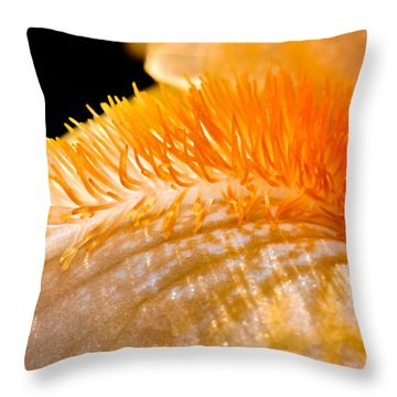 Iris Caterpillar Throw Pillow