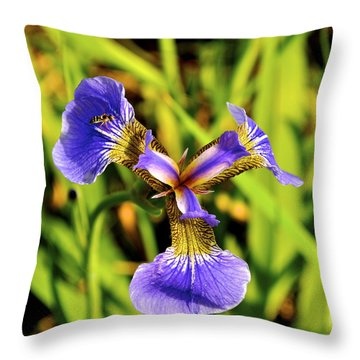 Throw Pillow featuring the photograph Iris by Cathy Mahnke