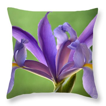 Iris Elegance Throw Pillow