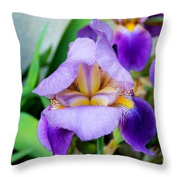 Iris From The Garden Throw Pillow
