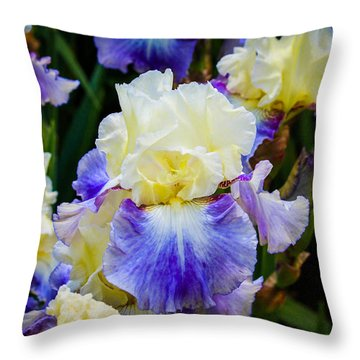 Throw Pillow featuring the photograph Iris In Blue And Yellow by Patricia Babbitt