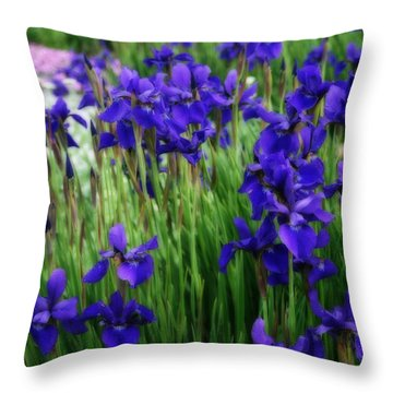 Throw Pillow featuring the photograph Iris In The Field by Kay Novy