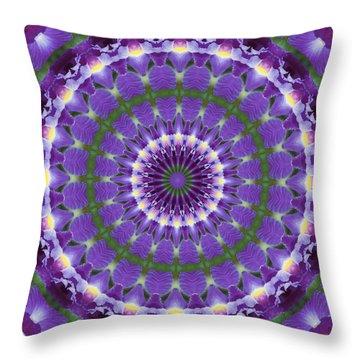 Iris Kaleidoscope  Throw Pillow