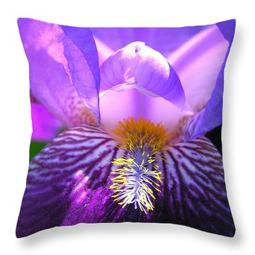 Iris Light Throw Pillow by Susan  Dimitrakopoulos