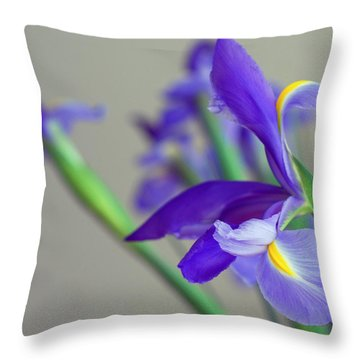 Throw Pillow featuring the photograph Iris by Lisa Phillips