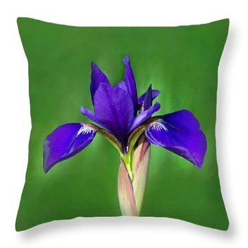 Iris Throw Pillow by Marion Johnson