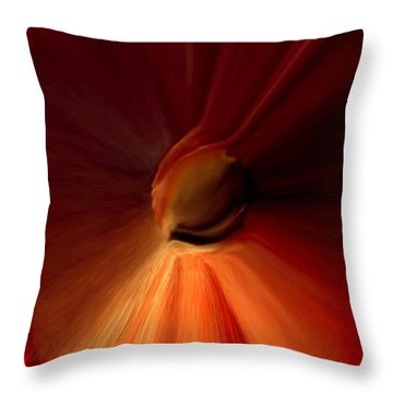 Iris Of Life Throw Pillow by Reggie Duffie